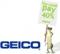 geico-fun-logo