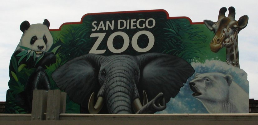 appraising employees at the san diego zoo case study For this particular case study, a detailed review of the web-based appraisal system of the san diego zoo for the employee appraisal system at san diego zoo.